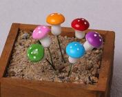 A-goo Miniature Garden Fairy Ornament Flower Pot Plant Pot Home Decor 6pcs Mushroom