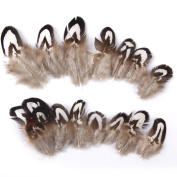 Natural Chicken Feathers Craft for Mask Hat 2-7cm Pack of Approx. 50pcs