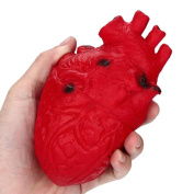 PrettyW Slow Rising Squishies Novelty Silicone Stress Ball Scary Organ Heart Squeeze Toy Stress Reliever Toy