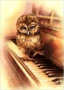 5D DIY Diamond Painting Kit, Owls Rhinestone Embroidery Cross Stitch Arts Craft for Home Decor 11.8*15.7 inch