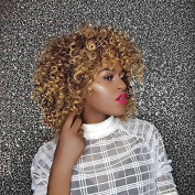 AISI HAIR Short Wigs for Black Women Afro Kinky Curly Hair Wigs Heat Resistant Wig with Bangs for African American Women
