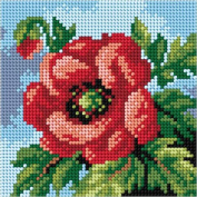 Poppy Tapestry Canvas