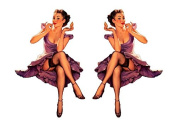 Set of 2 Remote Control (RC12) Pin Up Girl RC Aeroplane Sticker Decal