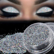 Exteren Sparkly Makeup Glitter Loose Powder EyeShadow Silver Eye Shadow Pigment