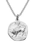 trendor Silver Zodiac Taurus with Necklace 08445