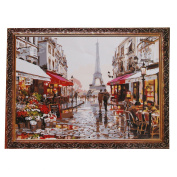 Messavor Painting Beginner DIY Paint-By-Number Kit Canvas Painting Oil Painting Numbered Colour Painting Paris Flower Street