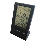 erthome Electronic Temperature Digital LCD Thermometer Hygrometer With Clock Date Weather Forecast