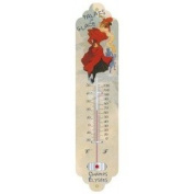Cartexpo TT265 Miscellaneous Ice Palace Metal Thermometer, 28 cm