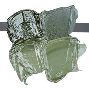 ARS PICTORICA OIL colour TUBE 40ml. GREEN EARTH