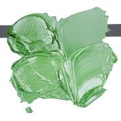 ARS PICTORICA OIL colour TUBE 40ml. CHROME OXIDE GREEN