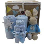 Baby boy gift basket Peter Rabbit Baby boy gift hamper boy baby shower gift new baby boy gift