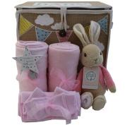 Baby girl gift basket Peter Rabbit Flopsy Bunny baby girl gift hamper girl baby shower gift new baby girl gift