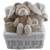 All organic baby gift baskets baby gift hampers unisex neutral baby shower gift new baby gift
