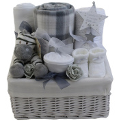 Baby gift baskets baby gift hampers unisex neutral baby shower gift new baby gift