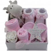 Baby girl gift basket baby girl gift hamper girl packed twinkle keepsake box baby shower gift new baby girl gift