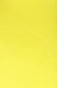 Masterson Super Pro Refill Sponge 1Pk