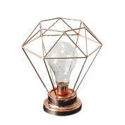 LEDMOMO Edison Style Metal Wire Lamp Light LEDs Wire Lights Battery Operated Warm White