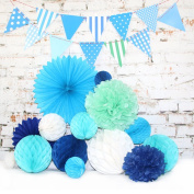 14 pcs Wedding Party Decorations Kit, Tissue Paper Pom Poms Flowers, Honeycomb Balls for Birthday | Baby Shower | Bridal Shower | Festival Party and Home Decoration