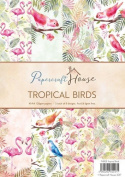 Papercraft House A4 Paper Pack, Tropical Birds