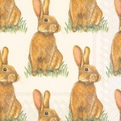 Ideal Home Range 20 3 Ply Paper Lunch Table Napkins Eddie Bunny Rabbit Hare Serviettes
