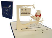 Pop Up Greeting Card 3D Greeting Cards for Lin Youve Passed Your Exams, Owl with Graduation Cap