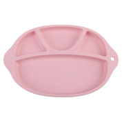 Baby Water Insulation Bowl,Infant Toddler Feeding Food Warming Plate Suction Bowl Tableware with 4 Divided Compartments