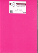 Creative Expressions Foundations Raspberry A4 Cardstock - 25 sheets