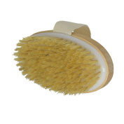 Body Brushes Dry Skin Bath Body Brush Natural Bristle Remove Dead Skin And Toxins Cellulite Treatment , Improves Lymphatic Functions , Exfoliates , Improves Skin's Health And Beauty