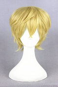 'Shorts Men Boy's Anime Cosplay Wigs Costume Wigs by Becca Wig