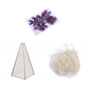 Fityle Pyramid Candle Mould + 500g Wax + 10pcs Pressed Dried Flowers for Wedding Candle Making