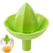 SONG LIN Portable Mini Manual Fruit Juicer Lemon Juicer Creative Kitchenware