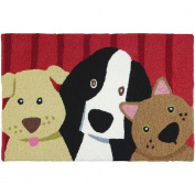 Jellybean Picture Perfect Pets Indoor/Outdoor Machine Washable 50cm x 80cm Accent Rug