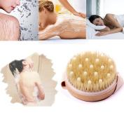 Exteren Premium Natural Bristle Wooden Bath Shower Body Back Dry Skin Brush
