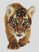 Bengal Adventure Counted Cross Stitch kit by Orcraphics