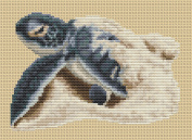 First Journey Counted Cross Stitch kit by Orcraphics
