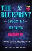 Raspberry Pi & Hacking: 2 Books in 1