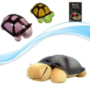 Serra Baby Turkish Ninnili Turtle Night Light