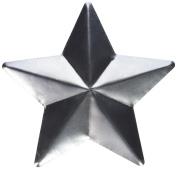 BCI Crafts TSTAR2 Salvaged Large Metal Stars 2/Pkg-,,
